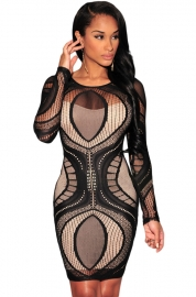 Black Lace Nude Illusion Long Sleeves Bodycon Dress