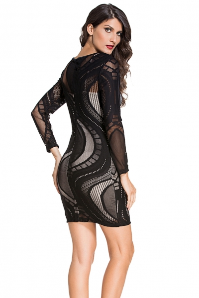 Black Lace Nude Illusion Long Sleeves Bodycon Dress Stylesimo