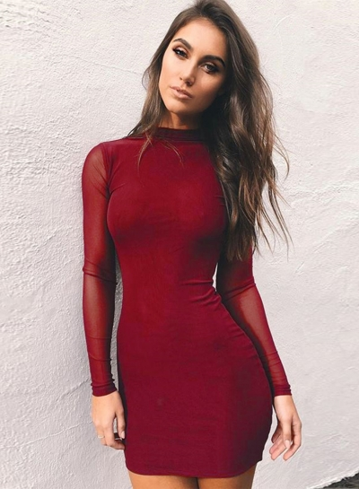 Mock Neck Long Sleeve Mesh Bodycon Dress