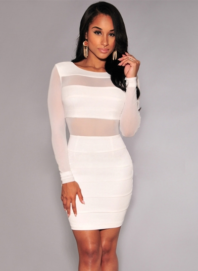 Long Sleeve Backless Mesh Bodycon Dress