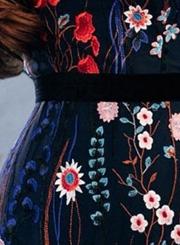 Mesh Elegant Embroidered Dress