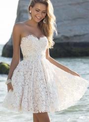 Elegant Strapless Lace A-line Cocktail Dress