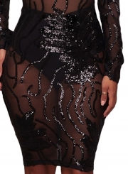 Sequins High Neck Transparent Bodycon Dress